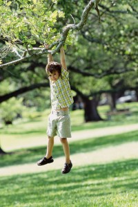 child dangling from branch