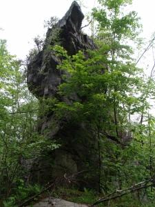 Raccoon Rock