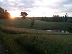 Sunrise at the Farm