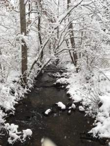 creek snow
