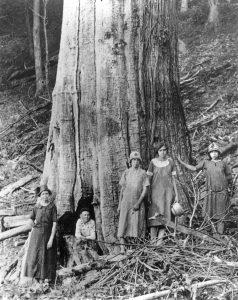 12-Shelton-Family-w-large-Chestnut-Tremont-Falls-TN-c1920-238x300
